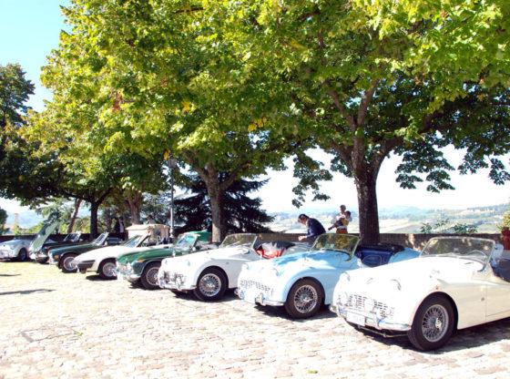 TR Day delle Colline Romagnole, 2014