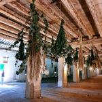 CASTELLI-del-FRIULI-2020 165